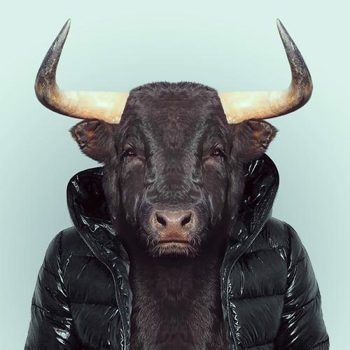 Bull by Yago Partal